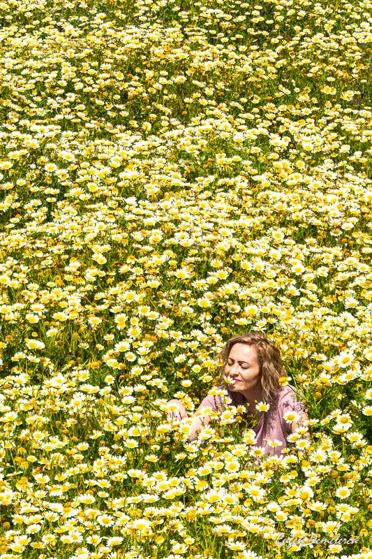 Elena in campul cu flori