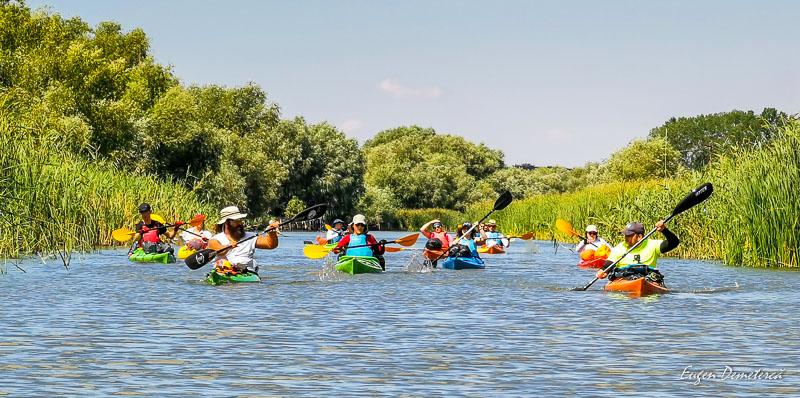 Aventurieri cu caiace in Delta Dunari