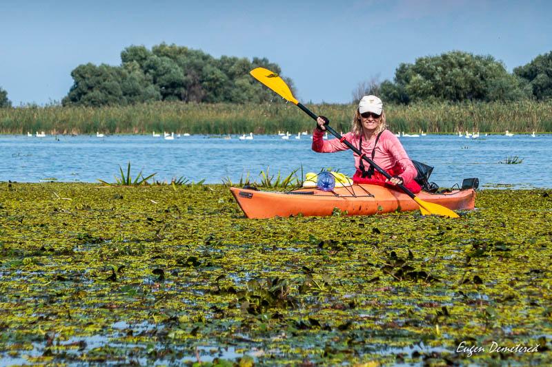 Caiac pe vegetatie acvatica in Delta Dunarii 2