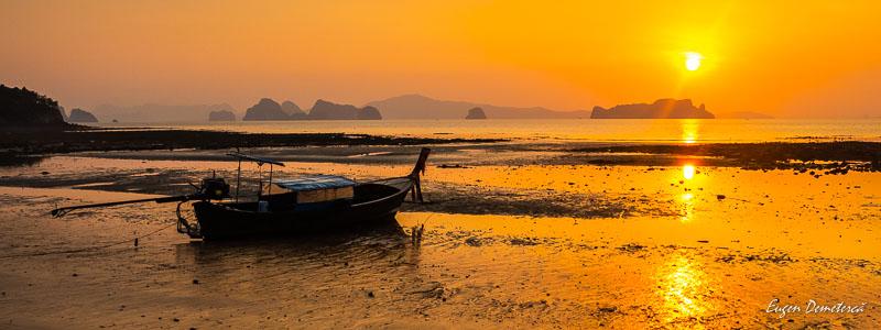 1010643 - Magia portocalie a Thailandei