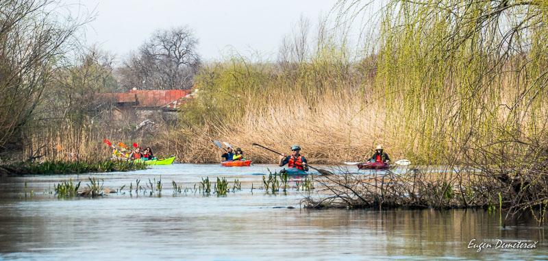 1034190 - Caiacul cu primăvară în Delta Neajlovului