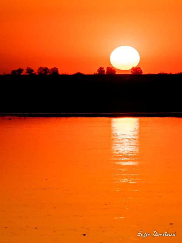 1034320 - Aventuri pe ape, de la Izbiceni la Turnu Măgurele