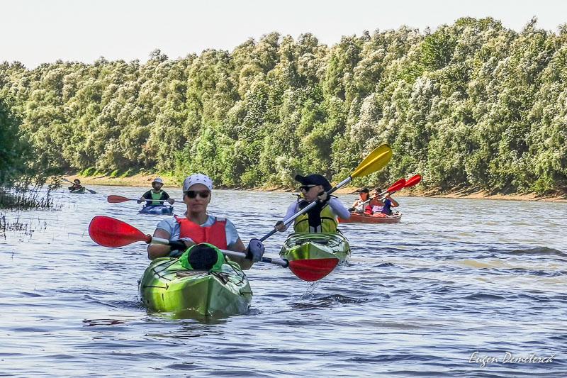 """IMG 20200809 102903 - Explorare """"wild"""" în Delta Mică"""