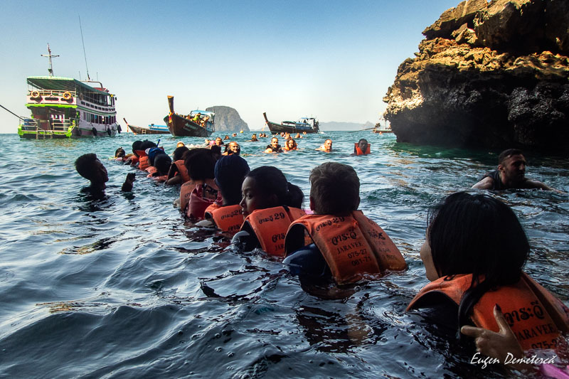P1065509 - Minunata Thailandă de sub ape