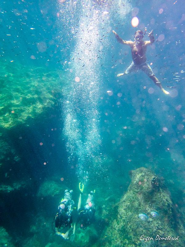 P1065568 - Minunata Thailandă de sub ape