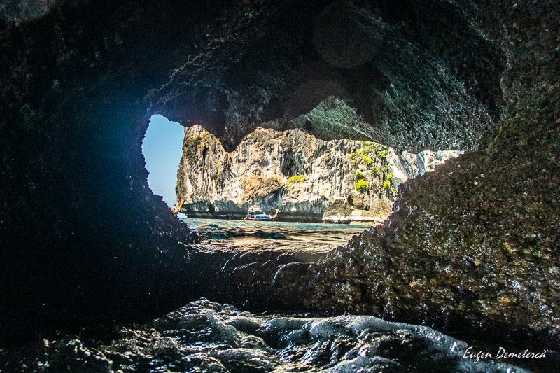 P1065630 - Minunata Thailandă de sub ape