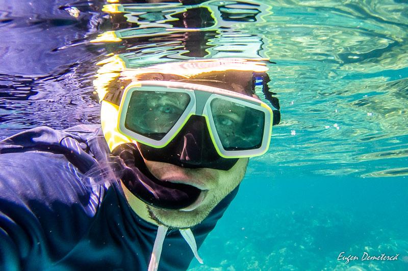 P1085734 - Minunata Thailandă de sub ape