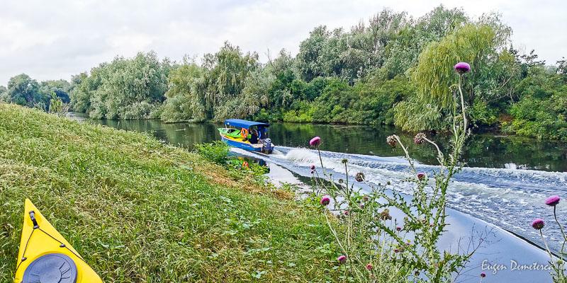 IMG 20210620 101921 - Ciclonizare în Delta Dunării