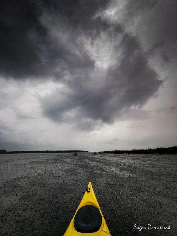 IMG 20210620 125337 3 - Ciclonizare în Delta Dunării
