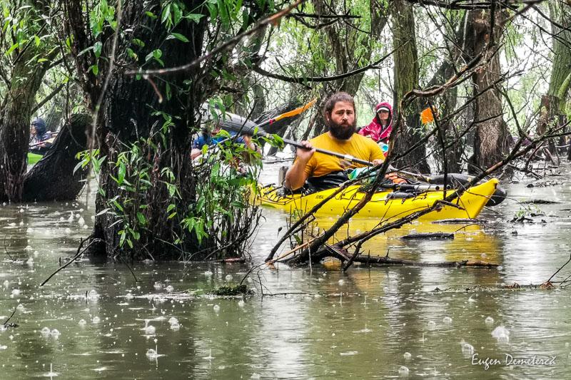 IMG 20210620 142148 - Ciclonizare în Delta Dunării