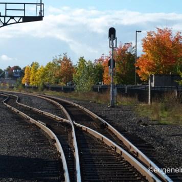 Eugene RR Tracks
