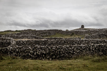 Grey Stone Fences (Aran Island, Ireland, July, 2019