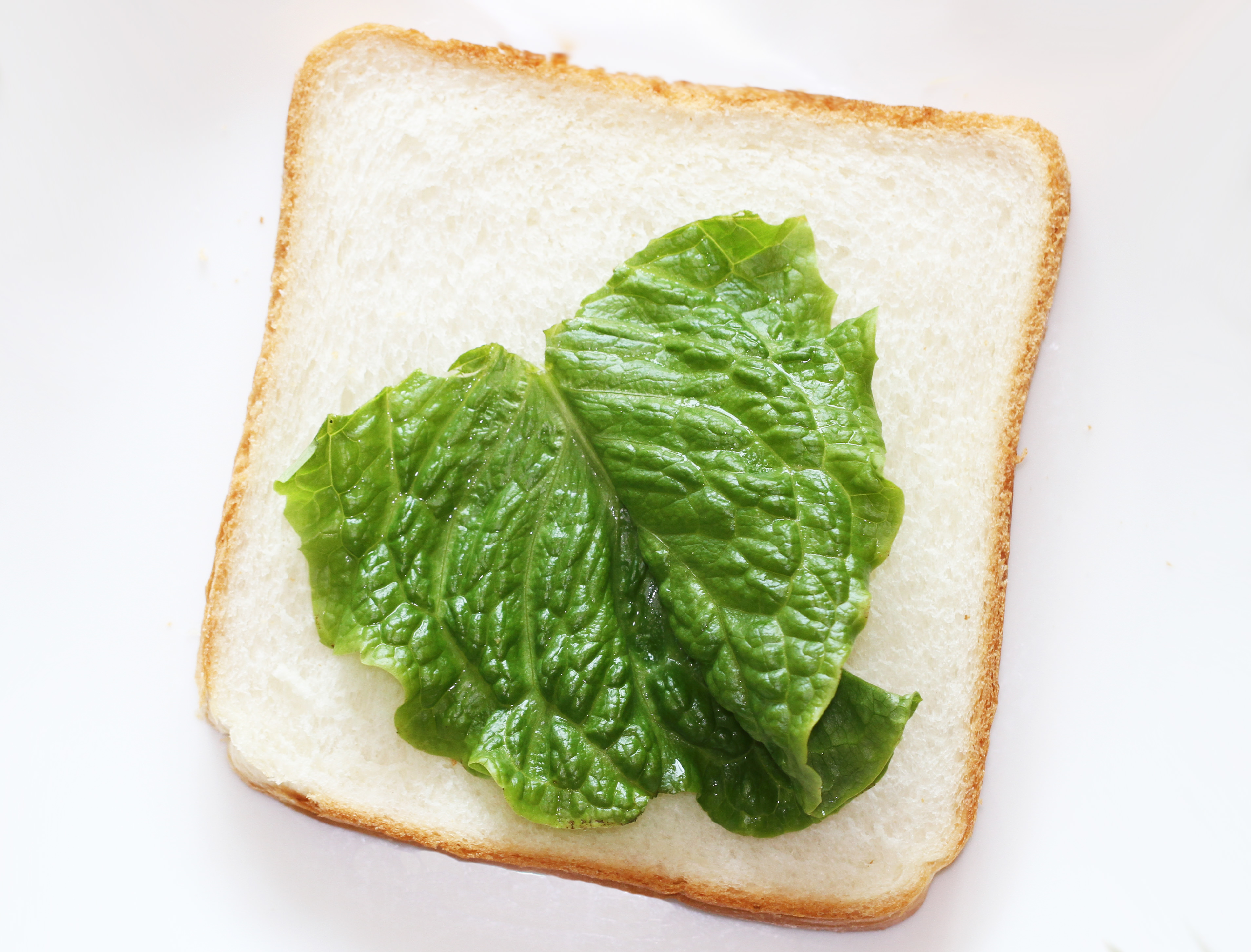 Arrange one green leaf on a slice of bread.