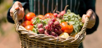 Research Headlines – Food sharing puts sustainability on the menu