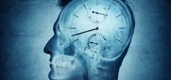 Research Headlines – Neural networks could reveal how the brain understands time
