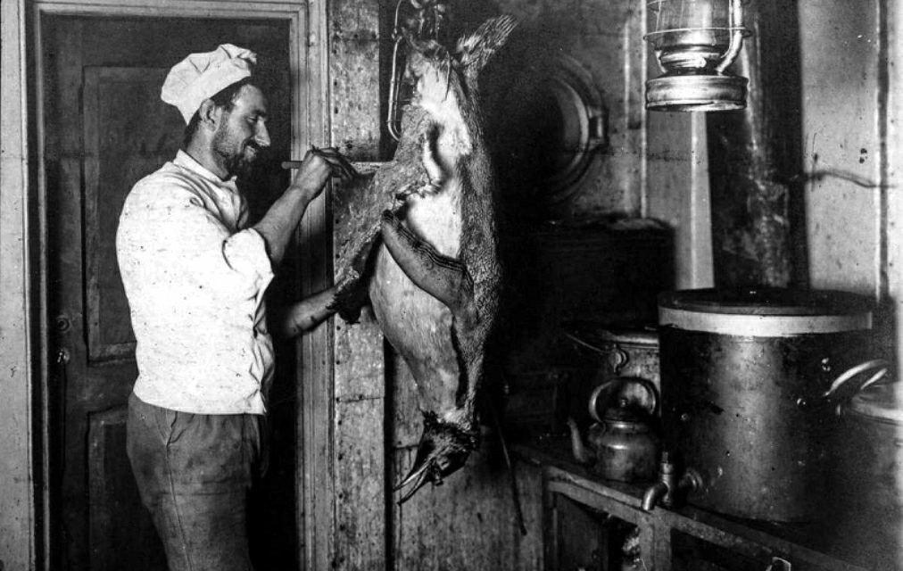 Foto del día: guisado de carne de….pingüino