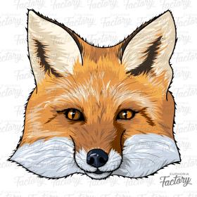 Fox design