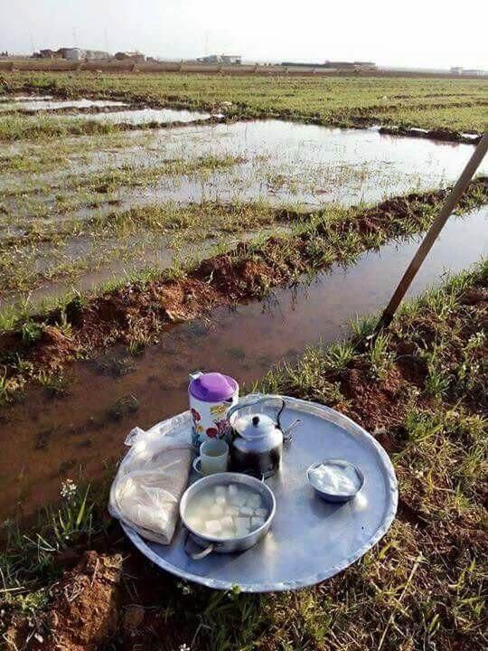 صور من الريف تحاكي البيئة الفراتية البسيطة