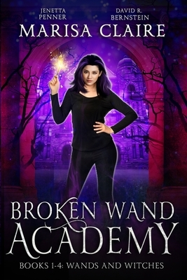 Broken Wand Academy: Books 1-4: Wands and Witches Box Set (Veiled World)