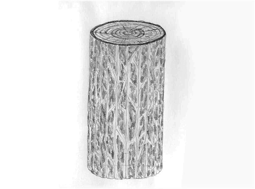 como usar lápis para sombrear árvores