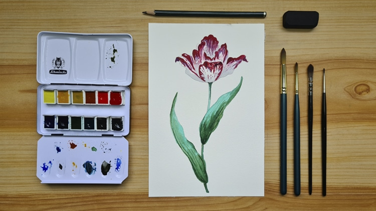 curso de aquarela botanica