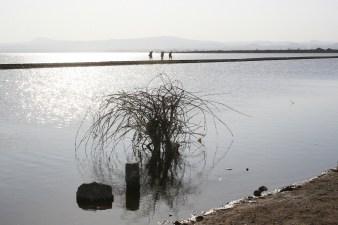 Lake Basaka, Ethiopia