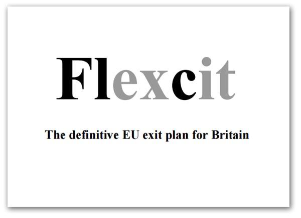 000a Flexcit-026 graphic.jpg