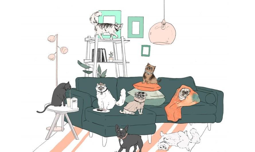 Si vos animaux devaient s'approprier une pièce de la maison