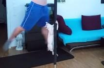 飼い主さんとポールダンスする猫