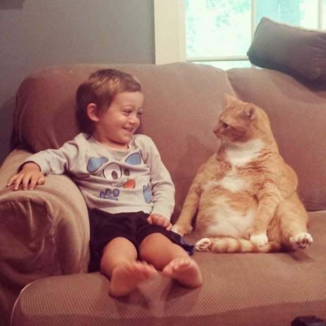 男の子とアイコンタクトする猫