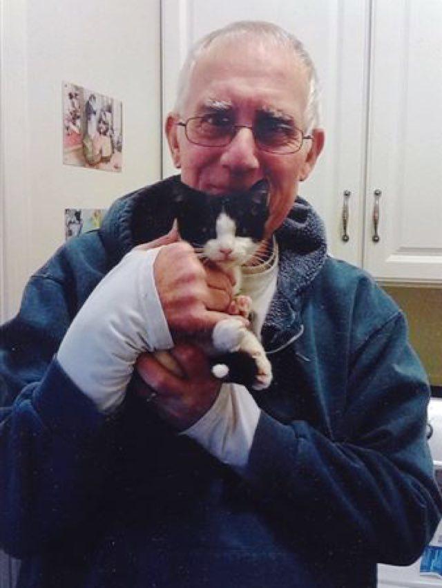 抱き抱えられる保護子猫