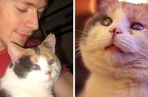 盲目の猫と青年の出会い