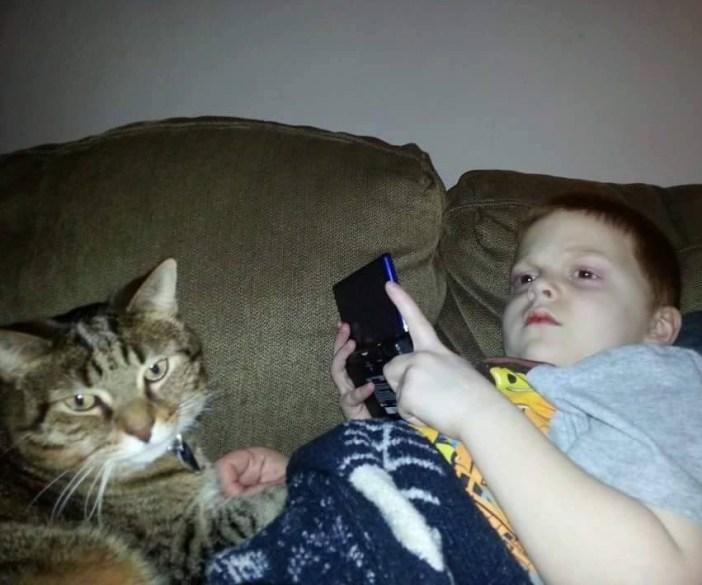 いつもいっしょの猫と男の子
