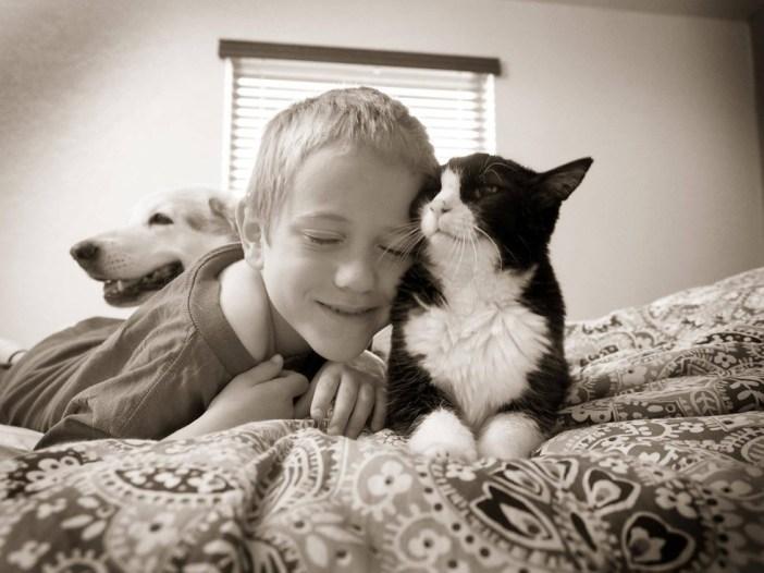 幸せそうな少年と猫