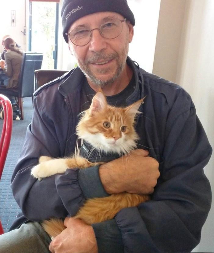 男性に抱っこされる猫