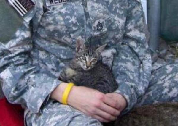兵士に抱っこされる猫