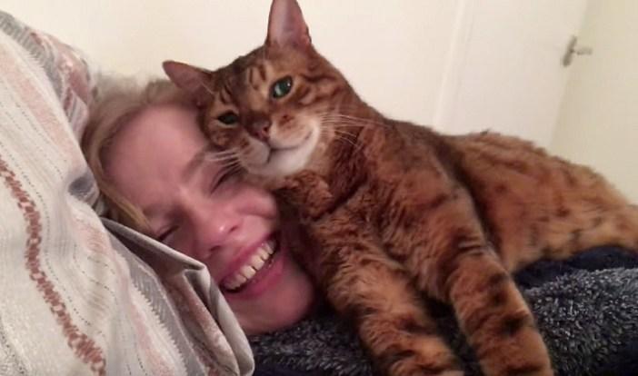 飼い主さんが大好きな猫