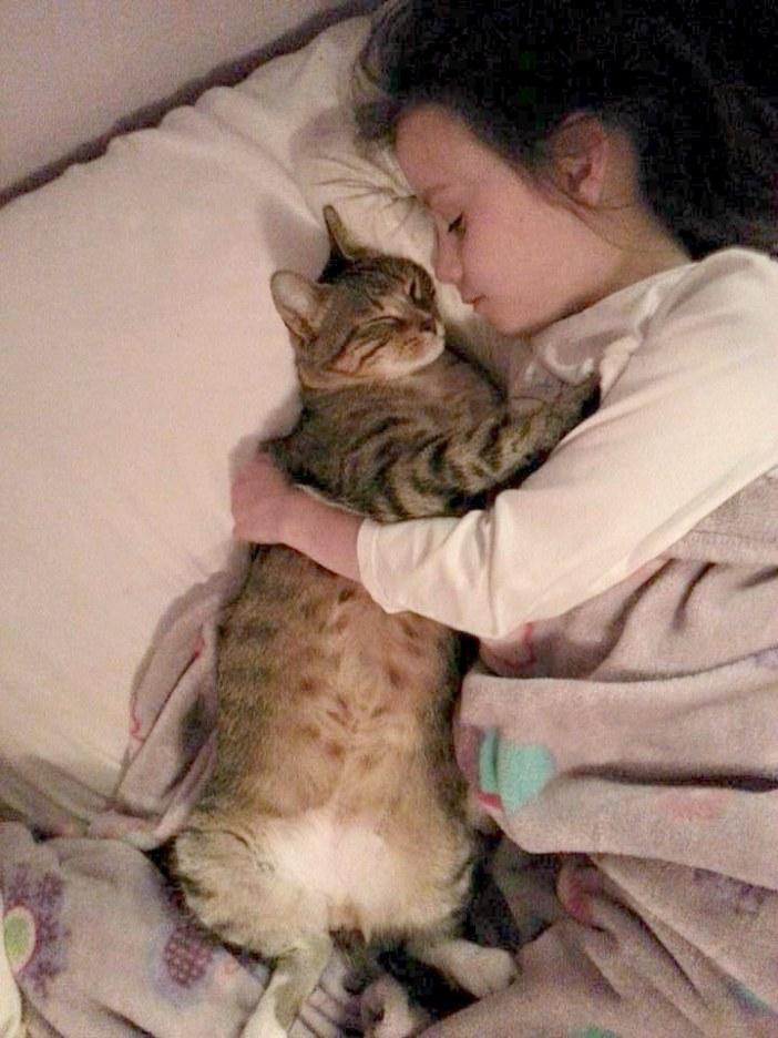 抱き合う女の子と猫