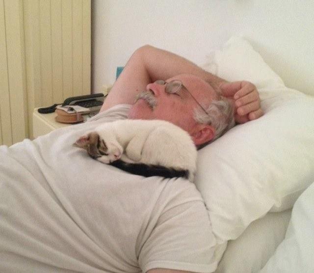 おじいちゃんと猫