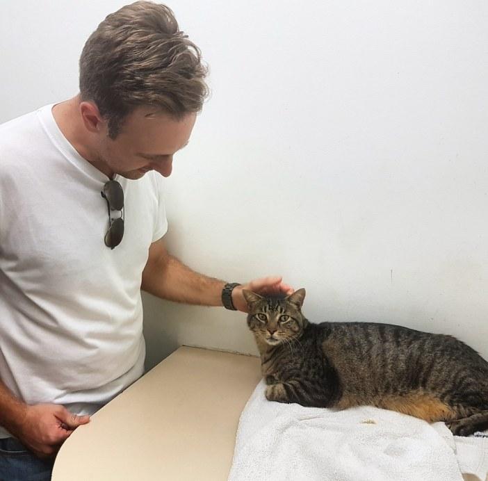 再会した飼い主さんと猫