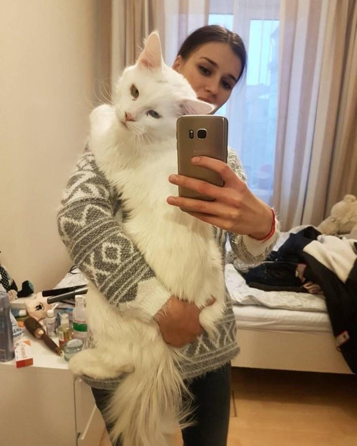 しっかりつかまる猫