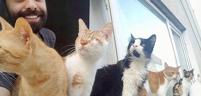 猫とピアニスト