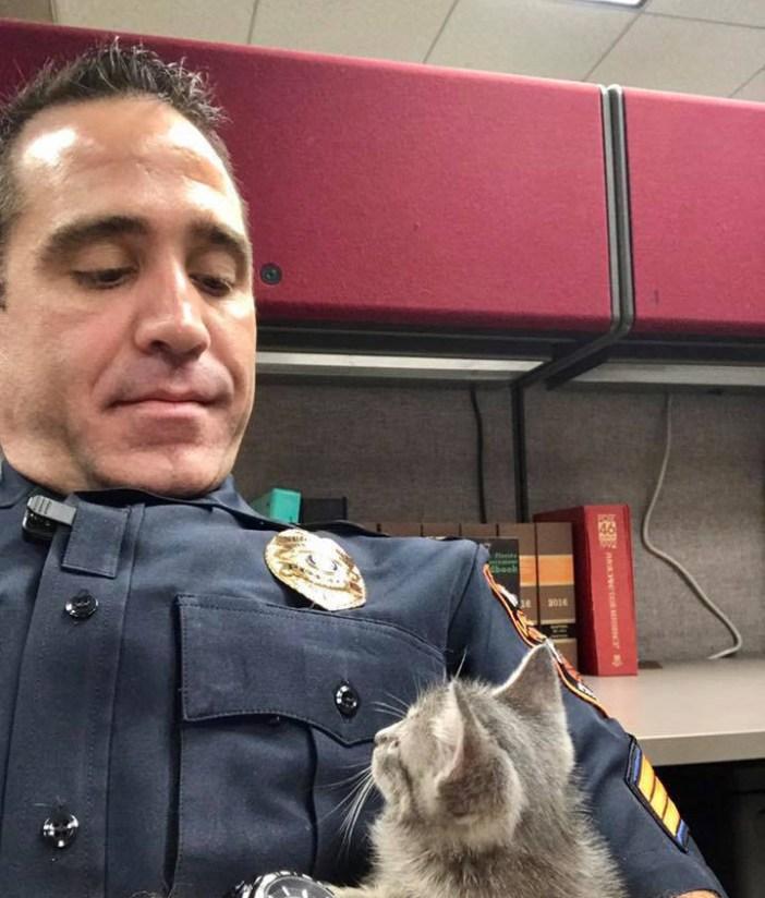 見つめる警官と猫