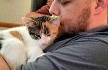 大好きな子猫と男性