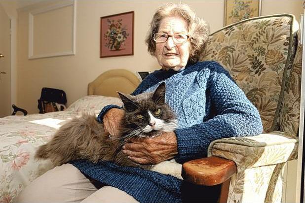 猫と飼い主さん