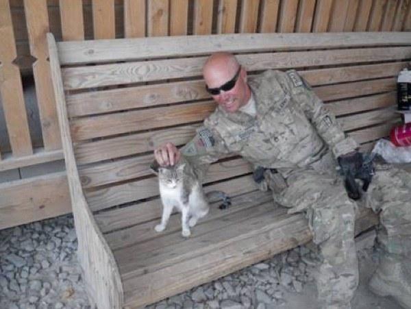 兵士に撫でられる猫