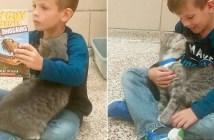 仲良しな男の子と猫