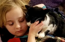 幸せな猫と女の子