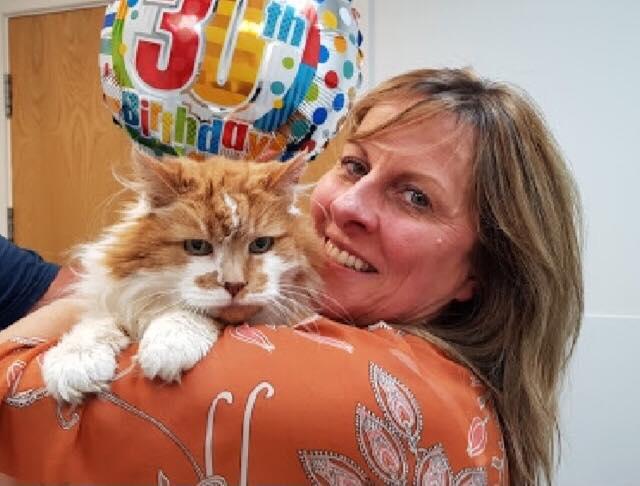 30歳の猫