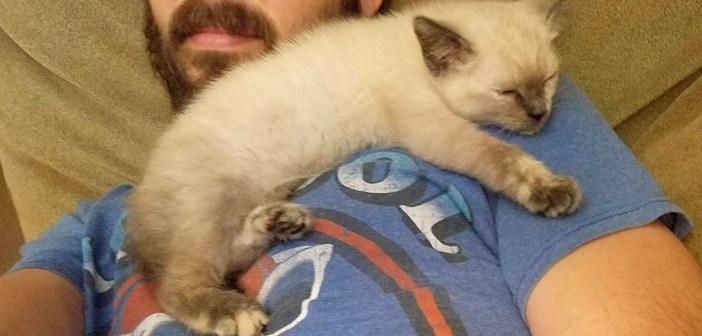 トラックの下から子猫を保護した男性。里親さんを探そうとしましたが、子猫はすでに新しい家を決めていました!